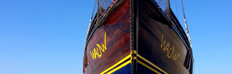 Slider - MSY WAOW Phinisi bateau de croisière plongée, navigue en Indonésie à Komodo, Raja Ampat, Papouasie, Moluques, mer de Seram, Halmahera, Manado, Lembeh et Alor