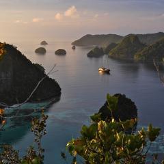 Phinisi Pinisi MSY WAOW sailing to Wayag Wajag Waigeo Indonesia