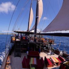segeln mit Tauchschiff und Segelboot MSY WAOW